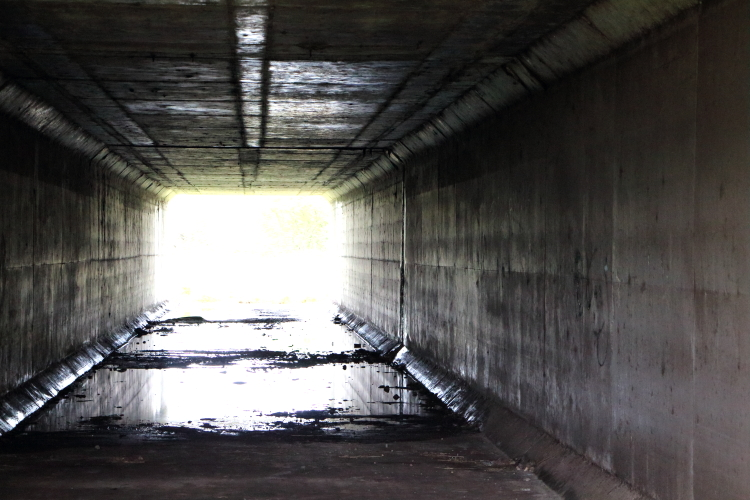 The Light at the End of the TunnelSmall