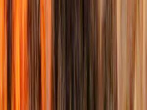 Stripes-MoltonSmall
